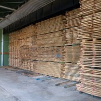 drying-oak_planks-eurochene